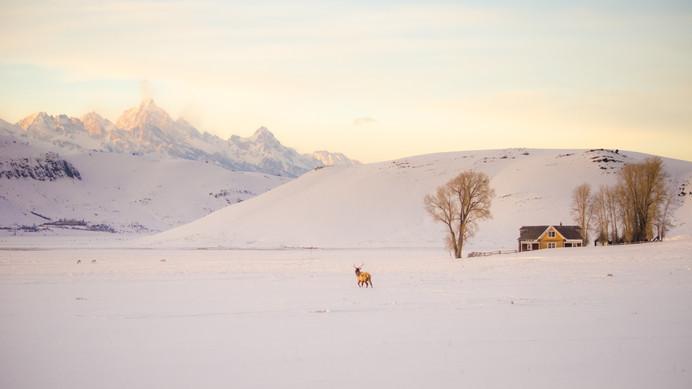 Miller House Winter-1525.jpg
