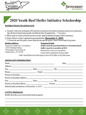 2020 Heifer Scholarship Application v2_P