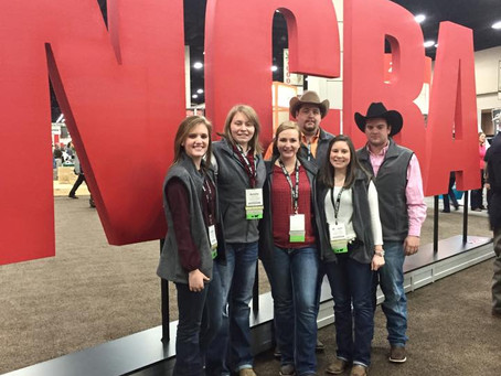 Young Cattle Producers Can Get More Out of 2021 Cattle Industry Convention in Nashville
