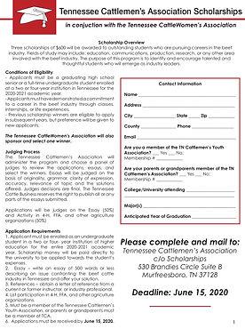 TCA Scholarship App.jpg