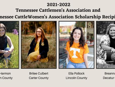 Tennessee Cattlemen's Association Awards Four Educational Scholarships
