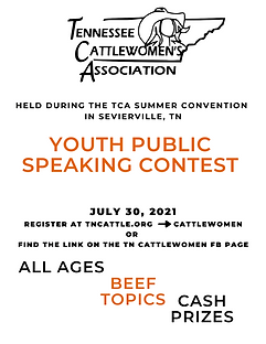 CW Speaking Contest Graphic.png