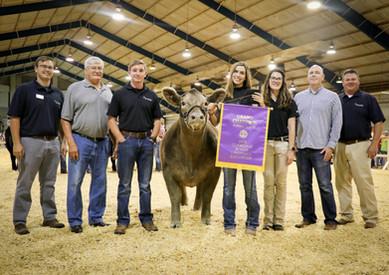 2019 Champion Steer Sponsor
