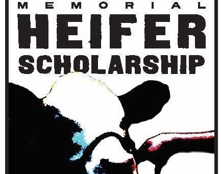 Kenneth Ambrose Memorial Heifer Scholarship Winners Selected