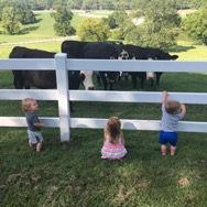 Farm Feature Friday: the Van Slyke Family of Williamson County