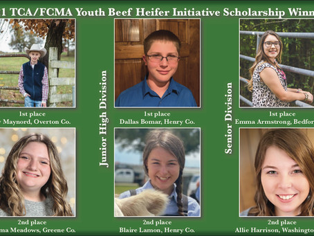 SIX TENNESSEE YOUTH WIN BEEF HEIFER SCHOLARSHIPS