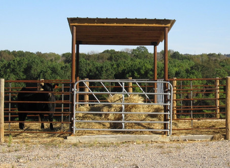 Fence Line Hay Feeders: An Update on Research