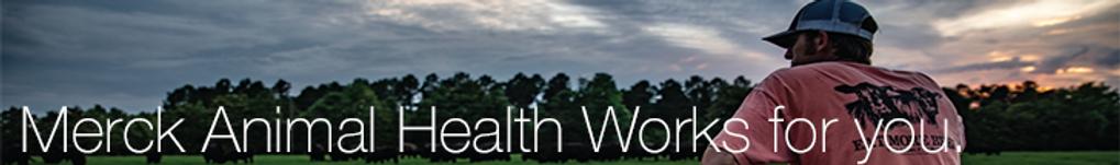 MAHWorksHeader-webbanner.png