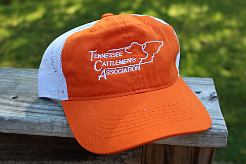 TCA Baseball Cap - Orange