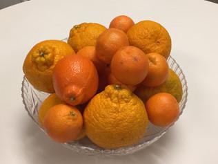 Junk Food vs. Fruit