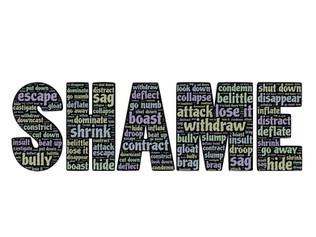 Does Shame Work?