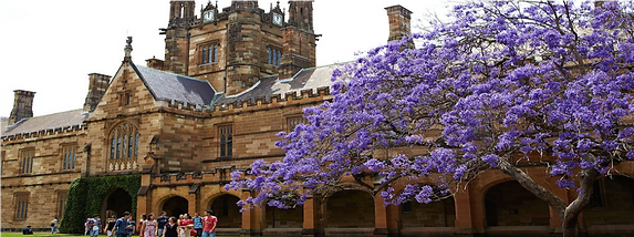 USYD Building Photo.png