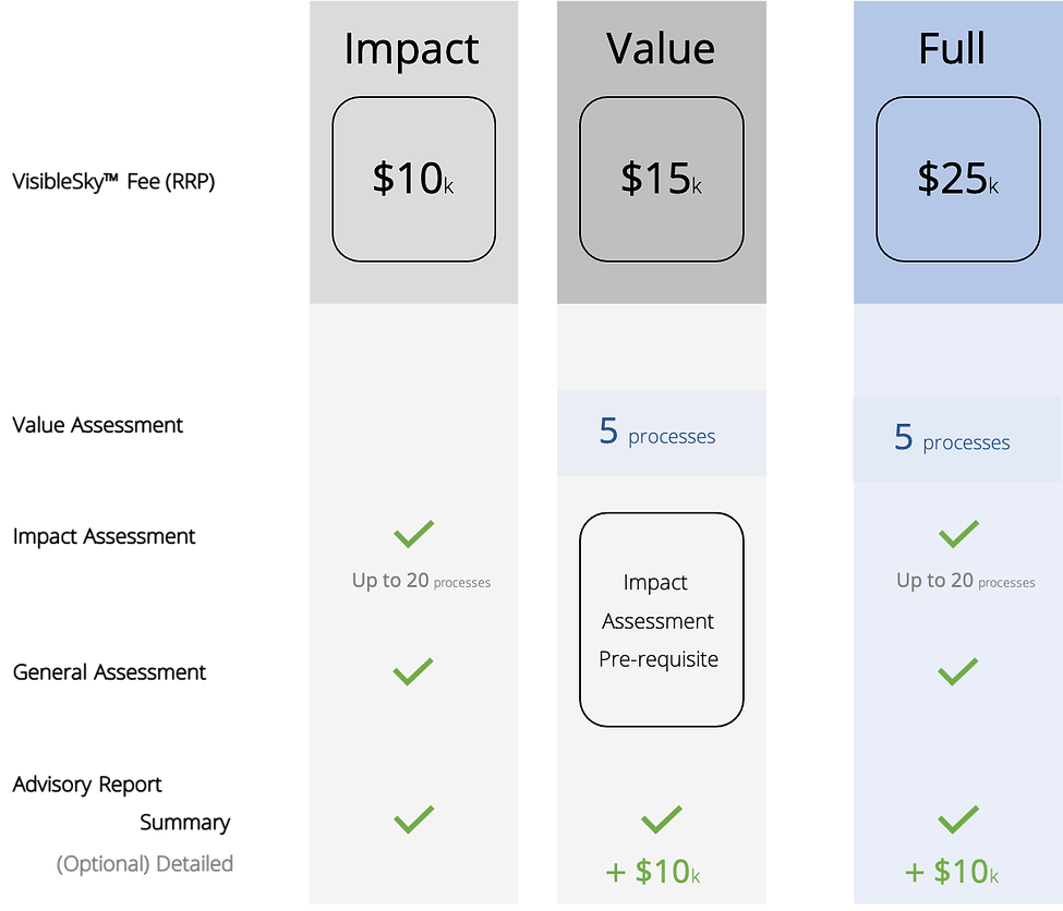 VisibleSky pricing table (website).png