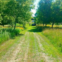 Nowak Property 3.jpg