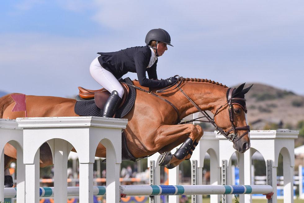 Alora Sporthorses