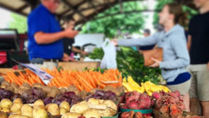 South Haven Farmers Market - 12 Minute Drive