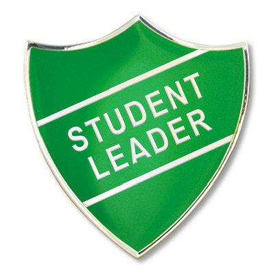 Sixth Form Student Leadership: Culture and Opportunities