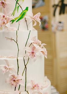 Orchid and bird wedding cake copy.jpg