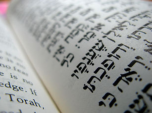 Daily shachrit Shull learing