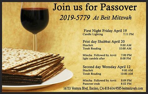 Beit Mitzvah passover flyer (1) copy.jpg