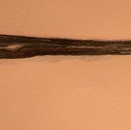 Mom musket.jpg