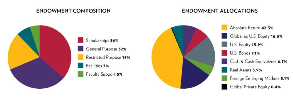 WEB-VIEW-graphs_Endowment1.png