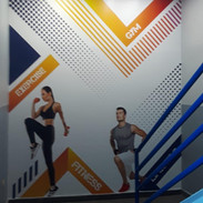 Interior Wall Graphic