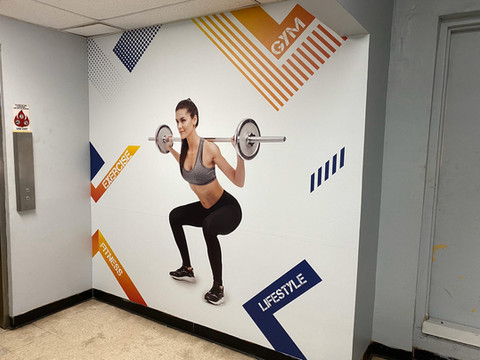 Interior Wall Gym