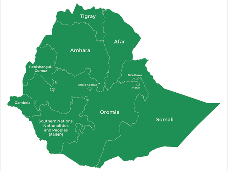 Political Situation in Ethiopia