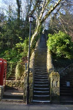 101 steps