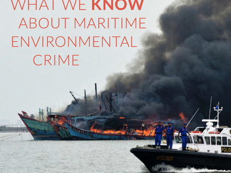 What We Know about Maritime Environmental Crime