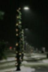 Bike Path Lights with Garland.jpg