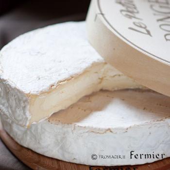 3/4(木) フランスの白かびチーズ - プティ ドンジェ
