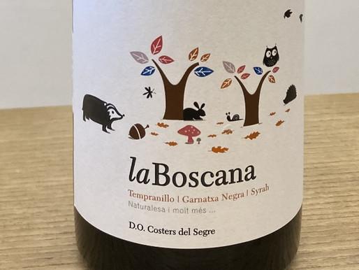 煮込みと楽しみたいスペインの赤ワイン