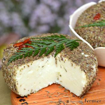 2/2 ハーブの香りの羊乳チーズ - ブラン デュ マキ(コルシカ島)入荷