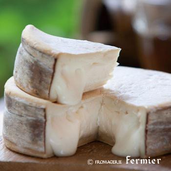 自由が丘|チーズ|リコッタ
