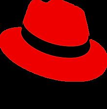 Logo-RedHat-D-Color-RGB.png