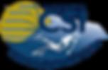 CSI logo avec soleil.png