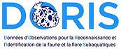 logo-DORIS-V4b.jpg