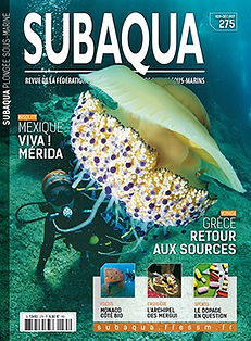 Subaqua 275.jpg