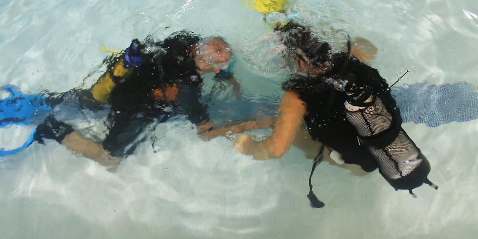 Bapteme de plongée piscine 1ère séance 2019