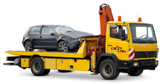 Camion careco.png