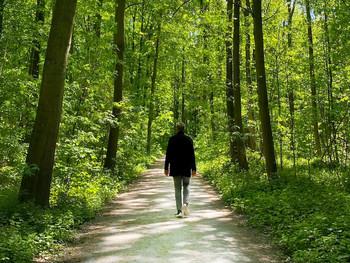 Prayer Walk #1 — Autumn 2020