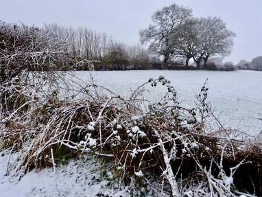 Snowy farm fields…