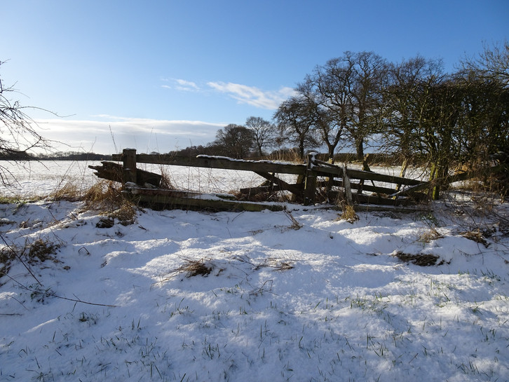 Blue skies and sunshine on snow covered fields