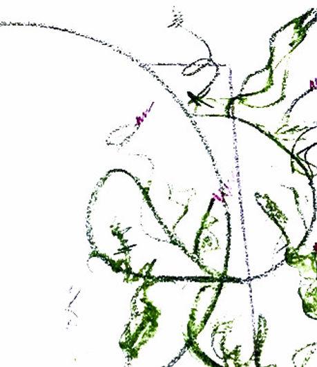 ideopl%25C3%25A6g3_edited_edited.jpg