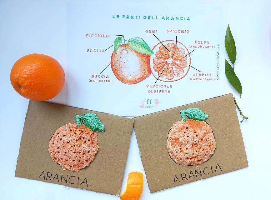 scheda didattica arancia, arancia di pasta di sale