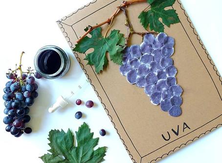 Un grappolo d'uva autunnale