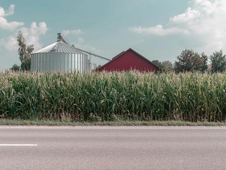 Exploring Rural Entrepreneurship With Rural Rise