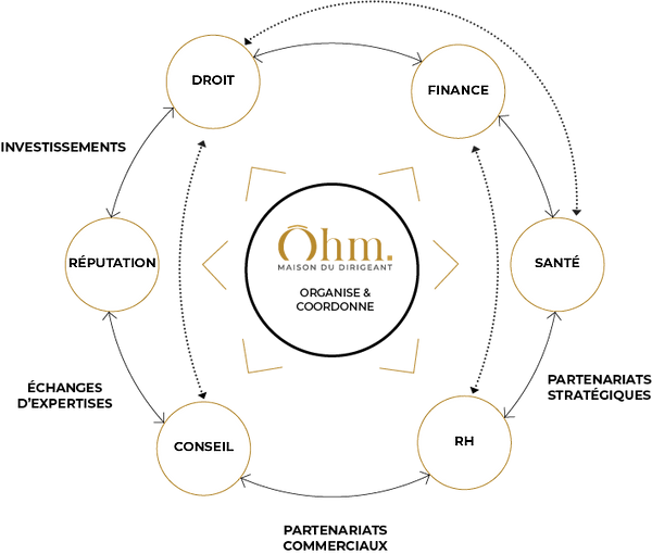 OHM-schema.png